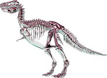 3D dinosaur skeleton Royalty Free Stock Images