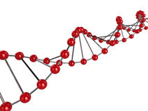 3d DNA. 3d illustration representing a DNA strand Royalty Free Stock Images