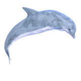 3D Dolphin Stock Images