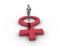 3D Dummy with Female Symbol. In white background Royalty Free Stock Photography