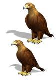 3D Eagle. Two three dimensional eagle illustrations Stock Photos