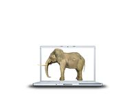 3D elephant on laptop Royalty Free Stock Photos
