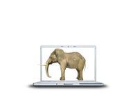 3D elephant on laptop Royalty Free Stock Photos