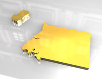 3d equatorial golden guinea map 免版税库存照片
