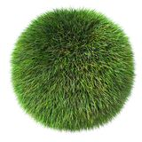 3d fluffy  grass sphere. On white background Stock Photography