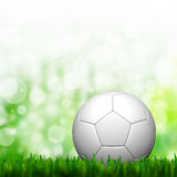 3D Football in green grass Stock Photo