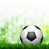 3D Football in green grass Stock Photos