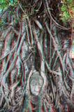 3d foto van gravure Boedha Stock Foto