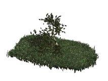 3D geïsoleerdn boom & gras Royalty-vrije Stock Fotografie