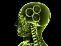 3d gears. 3d rendered x-ray illustration of a human head with gears Royalty Free Stock Photo
