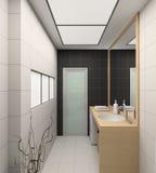 3D geef modern binnenland van badkamers terug Stock Afbeeldingen