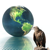 3D globe with eagle Royalty Free Stock Photos