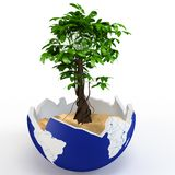 3d globe shell with tree and sand Stock Photos