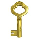 3d golden key Royalty Free Stock Images