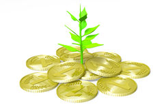 3D graphics, metaphor, money, plant, growth Stock Images