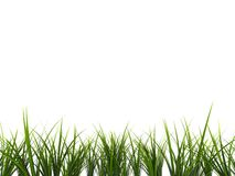 3d gras Stock Photos