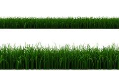 3d graslijn die op wit wordt geïsoleerde vector illustratie