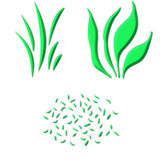 3D Grass. Types isolated in white Royalty Free Stock Photo