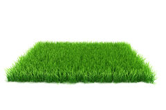 3d grass Royalty Free Stock Photos