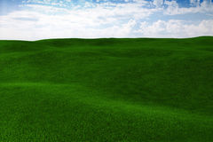 3d grass field and a perfect sky Royalty Free Stock Photography