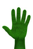 3d Grass hand isolated Royalty Free Stock Image
