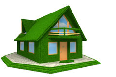3d Grass House icon isolated Royalty Free Stock Images