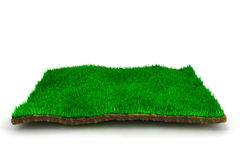 3d grass lawn. On white background Stock Photo