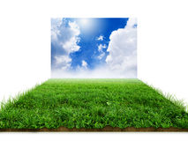 3D grass with sky isolated Stock Images