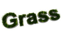 3D grass text Royalty Free Stock Photo