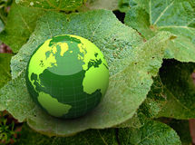 3d green globe on a leaf Stock Images