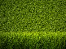 3d green grass texture, background Stock Images