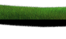 3D green infinite grass land alpha masked Royalty Free Stock Photos