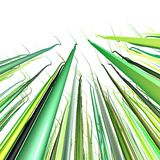 3d green wavy wire lines on white Stock Photography