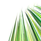 3d green wavy wire lines on white Stock Images