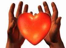 3D heart on 3D hands Stock Photos