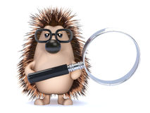 Free 3d Hedgehog With A Magnifying Glass Stock Photo - 42232940