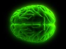 3d hersenen Royalty-vrije Stock Foto's