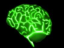 3d hersenen vector illustratie