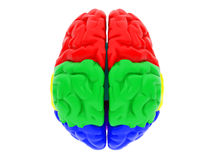 3d human brain. High resolution image. 3d rendered illustration. 3d human brain Royalty Free Stock Image