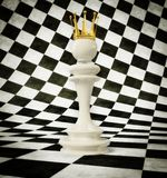 3d illustration. 3d chess queen  on a white and black cube background Stock Photos