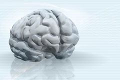3D illustration of brain. A 3D illustration of the brain, set on top a blueish backgrond with lines Royalty Free Stock Image