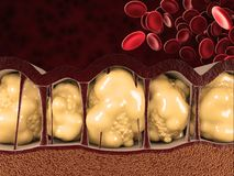 Free 3d Illustration Of Fat Cells With Blood Cells On Red Background Royalty Free Stock Images - 118428459