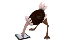 3D illustration an ostrich studies a tablet PC Royalty Free Stock Image