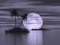3d island at nigth. 3d rendered image of island with two palm trees at nigth Stock Photo