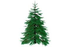 3d jodła odizolowywająca odpłaca się drzewa Fotografia Stock
