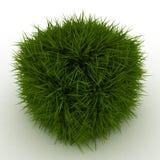 3D Kubus van het Gras Stock Foto