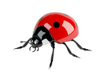 3d ladybird. 3d model of ladybird on white background Royalty Free Stock Image