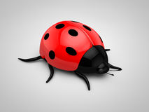 3d Ladybird Royalty Free Stock Photo