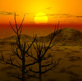 3d landscape. Sunset Royalty Free Stock Photos