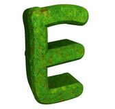 3d letter E in green grass Royalty Free Stock Images